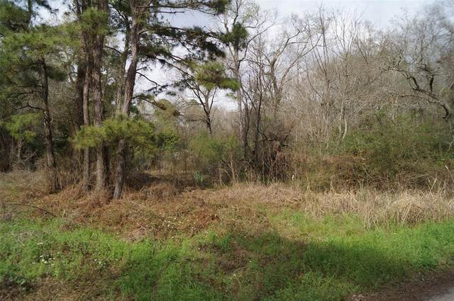 000 Marrella, New Caney, TX 77357 (MLS #47839906) :: Connect Realty