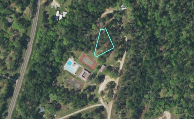 TBD Shadowood Circle, Coldspring, TX 77331 (MLS #47851087) :: The Parodi Team at Realty Associates