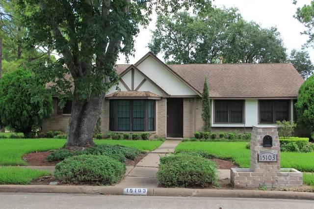 15103 Mcconn Street, Houston, TX 77598 (MLS #47869313) :: Rachel Lee Realtor