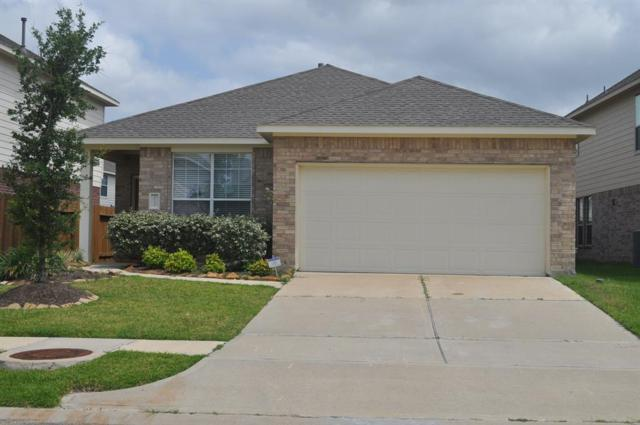 26426 Richwood Oaks Oaks Drive, Katy, TX 77494 (MLS #47930019) :: King Realty