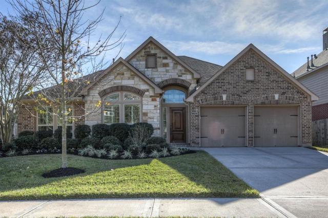 13502 Briar Rose Drive, Pearland, TX 77584 (MLS #47930704) :: Christy Buck Team