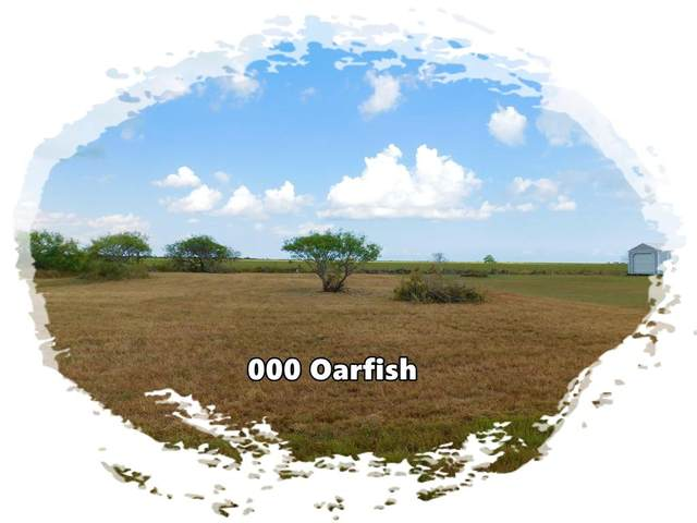 000 Oarfish, Palacios, TX 77465 (MLS #47979148) :: Guevara Backman