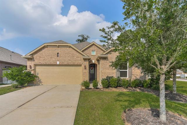 10215 Peeble Trail Court, Humble, TX 77338 (MLS #48024023) :: Green Residential