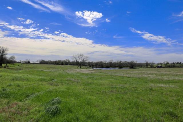 Lot 19 Reagans Way, Navasota, TX 77868 (MLS #48032862) :: Fairwater Westmont Real Estate