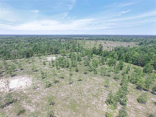 0030 Brushy Creek Creek, Onalaska, TX 77360 (MLS #48052928) :: Michele Harmon Team