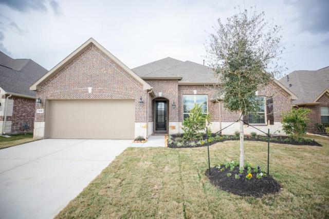 3631 Pasteur Lane, Iowa Colony, TX 77583 (MLS #48103383) :: The Bly Team