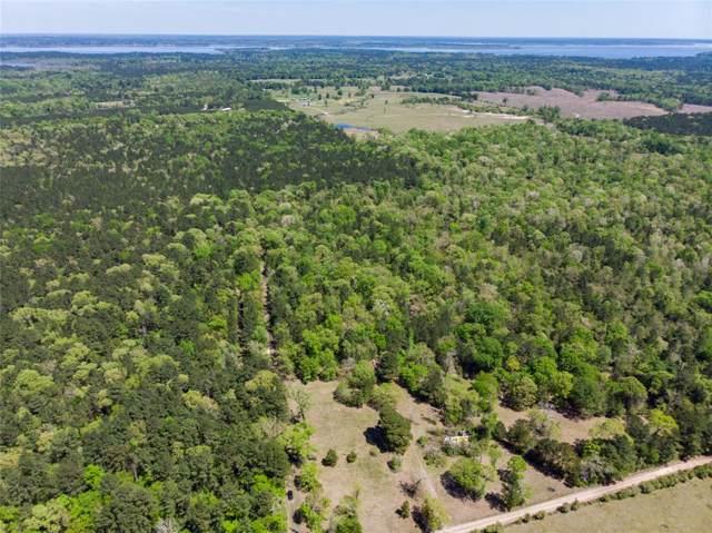 0 Llloyd Walker, Broaddus, TX 75949 (MLS #48104542) :: Phyllis Foster Real Estate