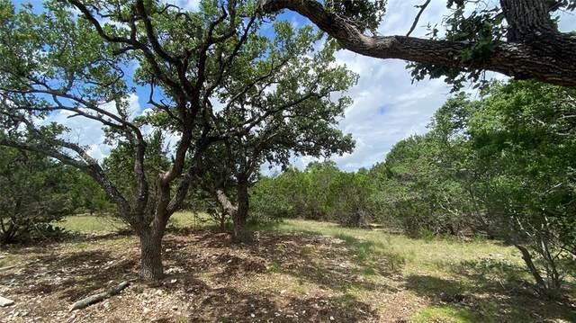 585 Rock Trail Place, Spring Branch, TX 78070 (MLS #48155006) :: Keller Williams Realty