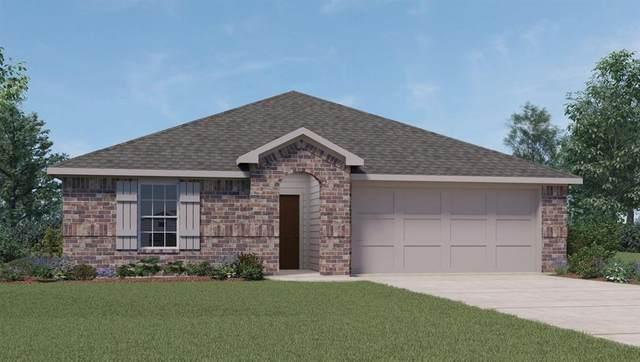 1627 Goose Island Lane, Rosenberg, TX 77469 (MLS #48258580) :: The Home Branch