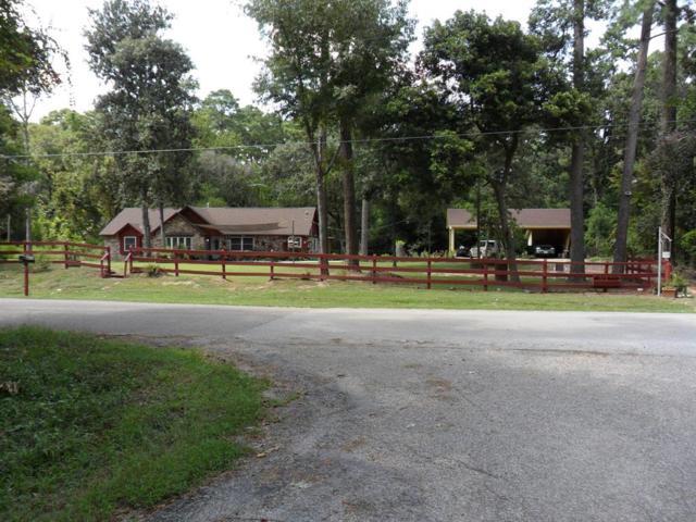 29115 S Plum Creek Drive, Spring, TX 77386 (MLS #48315795) :: Texas Home Shop Realty