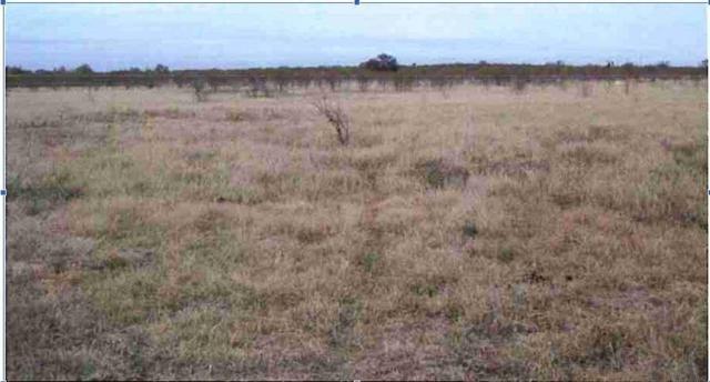 14031 Ih 35, Moore, TX 78057 (MLS #48316165) :: Krueger Real Estate