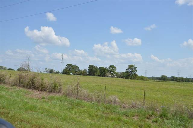 0014 Fm 149 - 14 Acres Road E, Anderson, TX 77830 (MLS #48327967) :: Lerner Realty Solutions