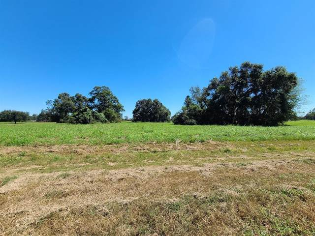 119 Pony Trail, Angleton, TX 77515 (MLS #4836156) :: The Lugo Group