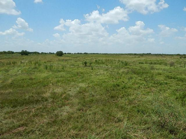 000 Beard Road, Needville, TX 77461 (MLS #48431235) :: Texas Home Shop Realty