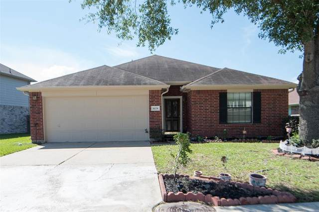 16134 Eaglewood Spring Court, Houston, TX 77083 (MLS #48472693) :: The SOLD by George Team