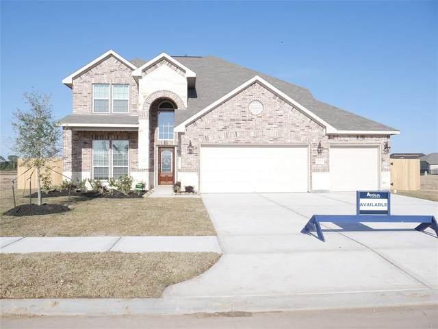 23213 Zinfandel Drive, Alvin, TX 77511 (MLS #48543961) :: Christy Buck Team
