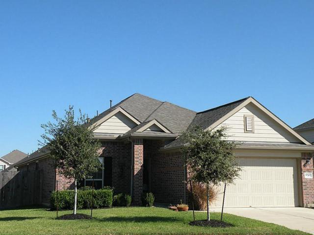 8746 Sunny Gallop Drive, Tomball, TX 77375 (MLS #48586821) :: Giorgi Real Estate Group
