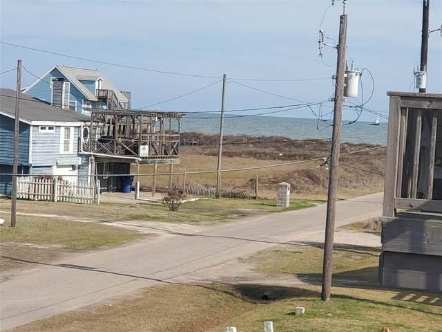 235 Driftwood Court, Surfside Beach, TX 77541 (MLS #48599618) :: Christy Buck Team