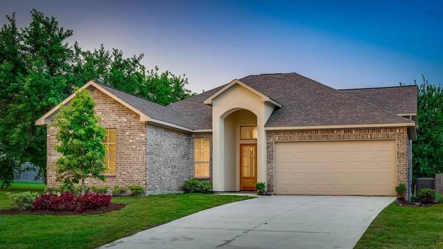 12 Amelia Court, Montgomery, TX 77356 (MLS #48629079) :: The Home Branch