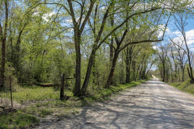 TBD County Rd 233, Bedias, TX 77831 (MLS #48642882) :: Magnolia Realty