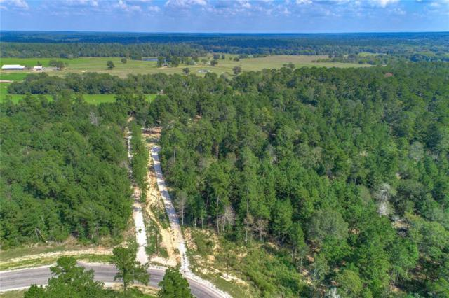 140&142 Dedication Trail, Huntsville, TX 77340 (MLS #48652518) :: The SOLD by George Team