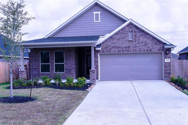 31206 Gulf Cypress Lane, Hockley, TX 77447 (MLS #48682959) :: The Heyl Group at Keller Williams