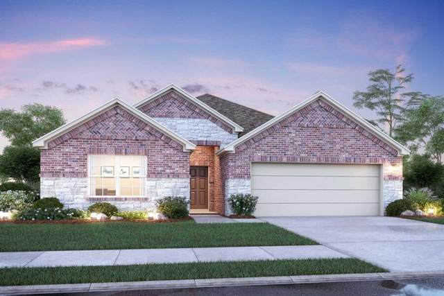 22116 Juniper Crossing Drive, New Caney, TX 77357 (MLS #48684778) :: All Cities USA Realty