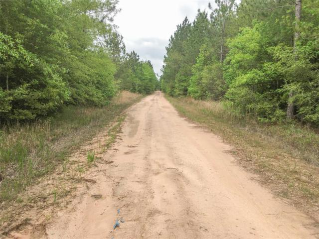 000 Farm Road 943, Kountze, TX 77625 (MLS #48706749) :: The Jennifer Wauhob Team
