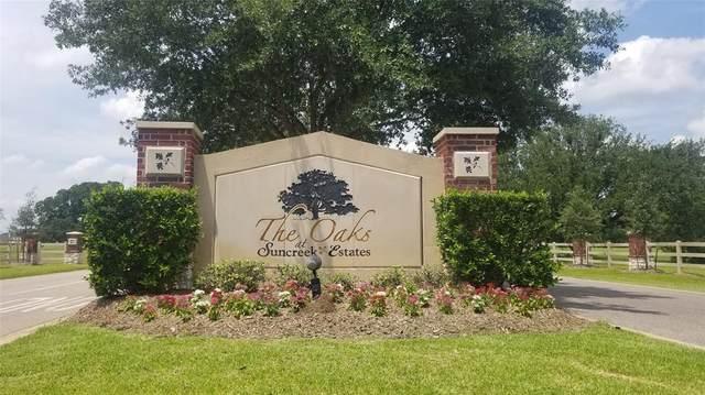 426 Mayad Boulevard, Rosharon, TX 77583 (MLS #48724260) :: The Home Branch
