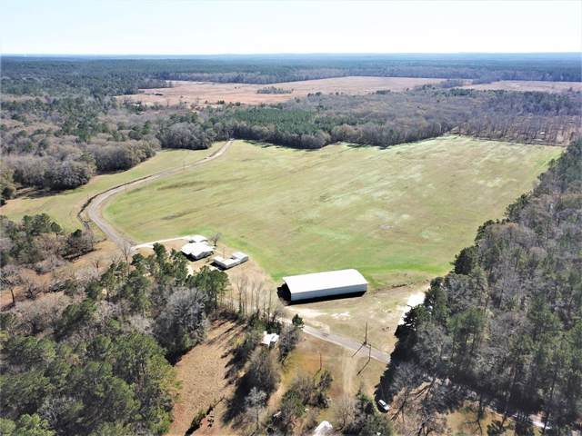1506 Forest Hopson Road, Zavalla, TX 75980 (MLS #48726399) :: Texas Home Shop Realty