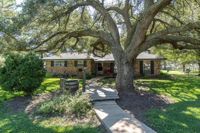 34727 Rodeo Road, Waller, TX 77484 (#48740551) :: ORO Realty
