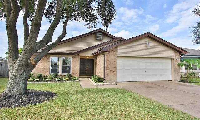 11858 Basilica Street, Houston, TX 77099 (MLS #4877930) :: Christy Buck Team