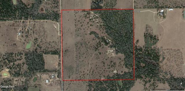 TBD Anchor Ranch Loop, Cistern, TX 78941 (MLS #48789215) :: Fairwater Westmont Real Estate