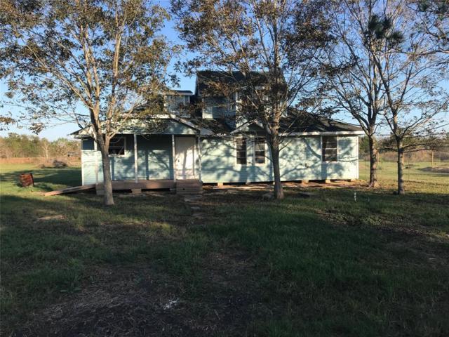 10819 Rosemary Street, Rosharon, TX 77583 (MLS #48796470) :: Glenn Allen Properties