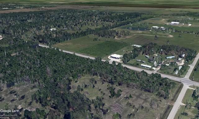 TBD Fm 2100 Road, Huffman, TX 77336 (MLS #48801586) :: The Sansone Group