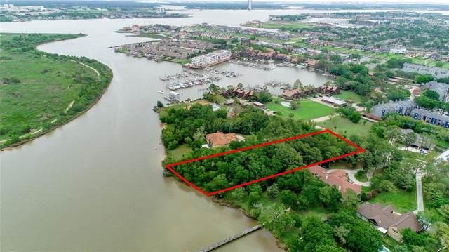 445 Nottoway Court, League City, TX 77573 (MLS #48824941) :: Homemax Properties