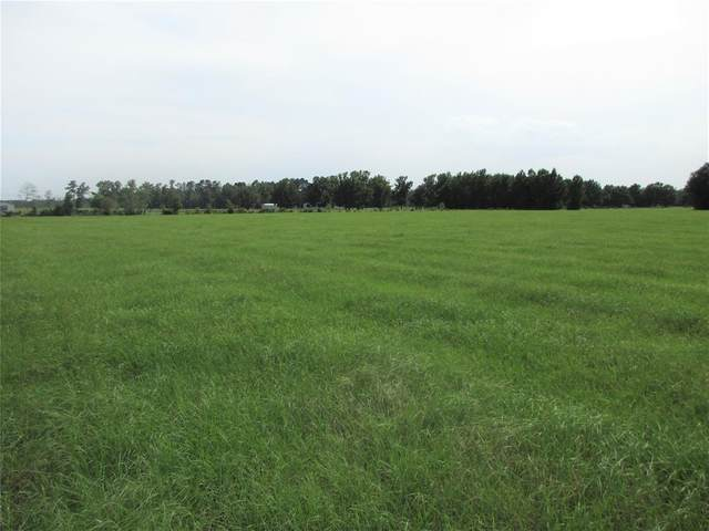 215 County Road 2285, Cleveland, TX 77327 (MLS #48872247) :: The Property Guys