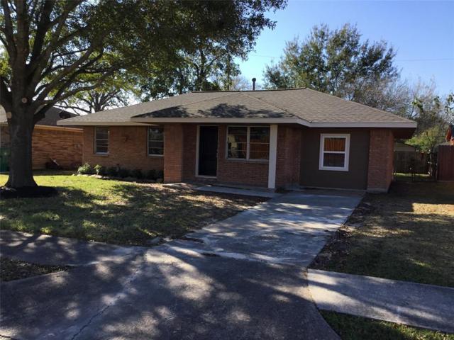 1312 Effie Lane, Pasadena, TX 77502 (MLS #48872734) :: Connect Realty
