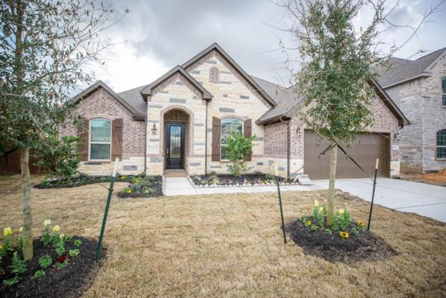 9618 Humboldt Trail, Iowa Colony, TX 77583 (MLS #49026514) :: The Bly Team