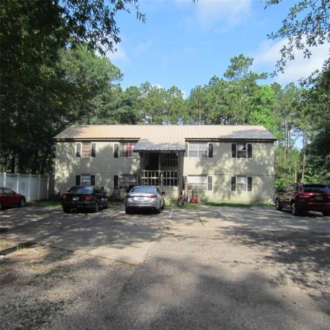 2655 Fountain View Street, Roman Forest, TX 77357 (MLS #49026885) :: The Parodi Team at Realty Associates