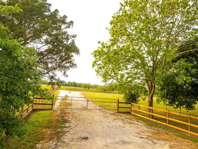 9020 County Road 196, Liverpool, TX 77577 (MLS #49028526) :: Phyllis Foster Real Estate