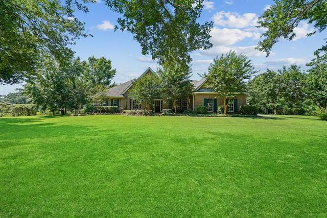 5311 Chinaberry Grove, Missouri City, TX 77459 (MLS #4905787) :: The Parodi Team at Realty Associates