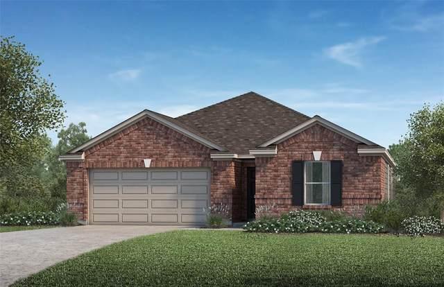 2323 Little Bluestem Lane, Rosenberg, TX 77469 (MLS #49079517) :: Connect Realty