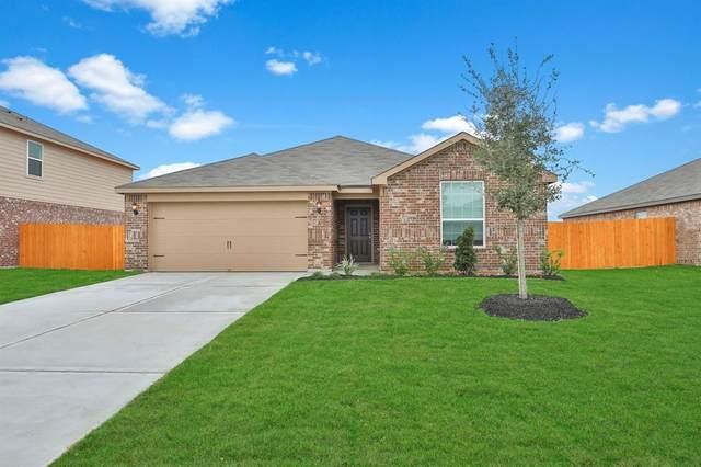 1127 Rare Fancy Drive, Iowa Colony, TX 77583 (MLS #49089151) :: Caskey Realty