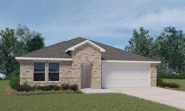 12307 Trumpetfish Court, Conroe, TX 77304 (MLS #49166338) :: The SOLD by George Team
