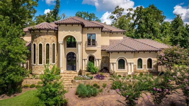 15 Primm Valley Court, The Woodlands, TX 77389 (MLS #49169805) :: Texas Home Shop Realty