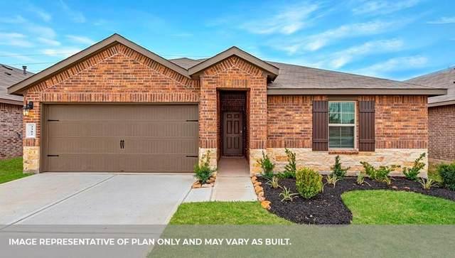 8006 Borland Court, Rosharon, TX 77583 (MLS #49192789) :: The Wendy Sherman Team