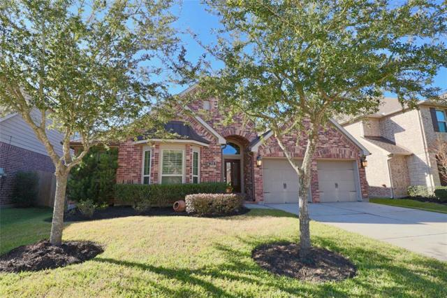 2918 Village Brook Lane, Pearland, TX 77584 (MLS #49207963) :: Christy Buck Team