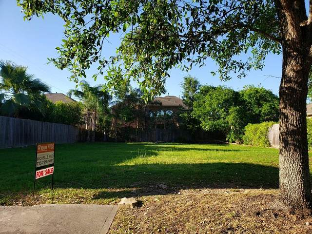 11214 English Rose Lane, Houston, TX 77082 (MLS #49214826) :: The SOLD by George Team