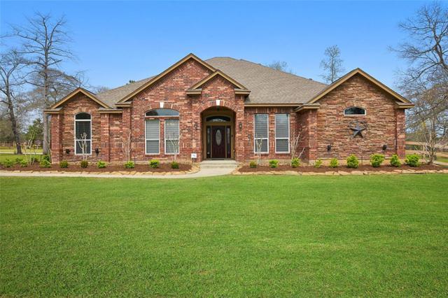 11 Lakefield Boulevard, Magnolia, TX 77355 (MLS #49271021) :: Giorgi Real Estate Group